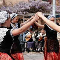 Sardane au village